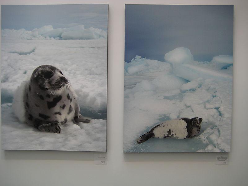 Nigel Barker Exhibit 013