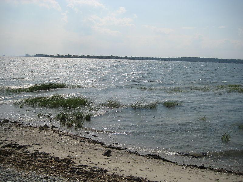 Compo Beach 017