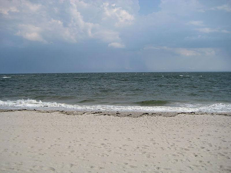 Compo Beach 028