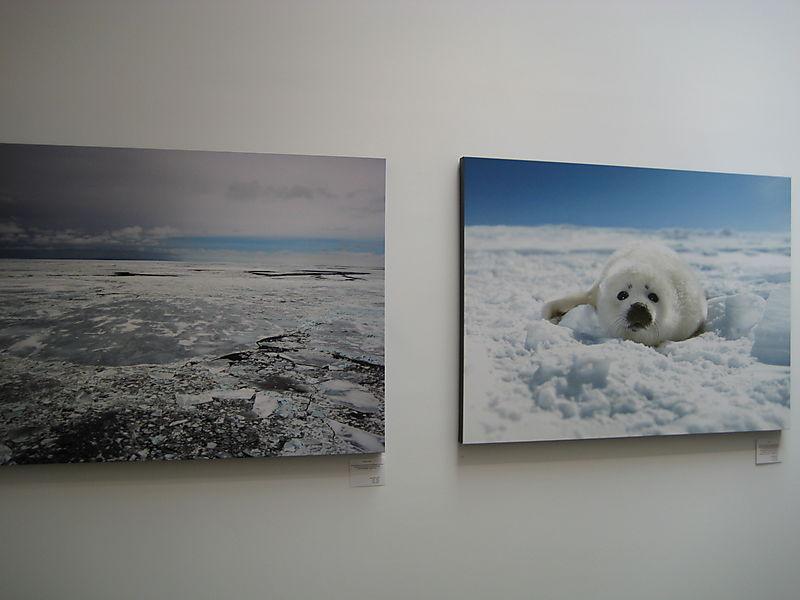 Nigel Barker Exhibit 012