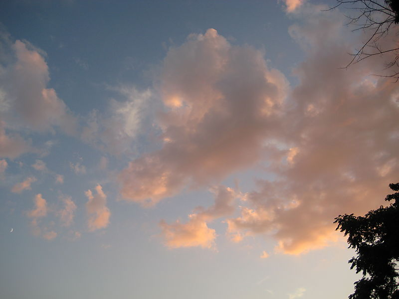 Compo Beach, sky 015