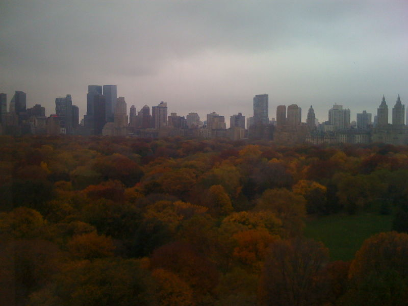 Central Park Fall Foliage 002