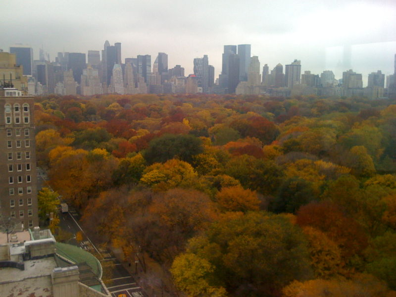 Central Park Fall Foliage 006