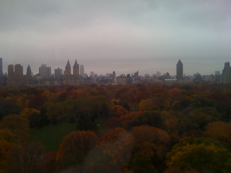 Central Park Fall Foliage 004